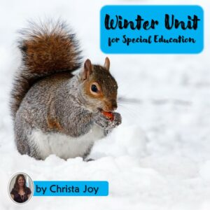 Winter Unit for Special Education with google slides | Distance Learning