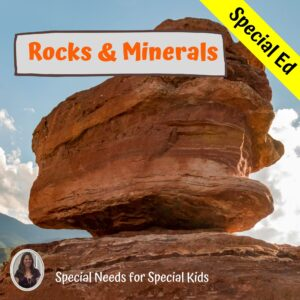 Rocks and Minerals unit for special ed