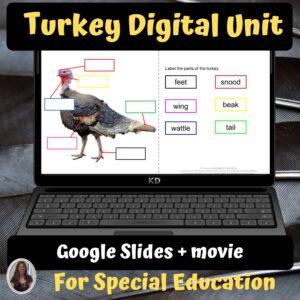 Turkeys Digital Unit for google classroom   Distance Learning