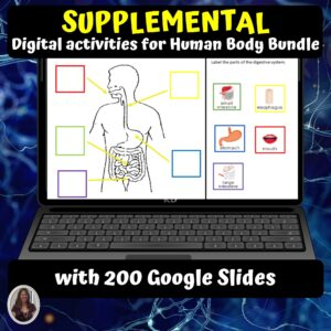 Human Body Supplementary Digital Activities | Distance Learning