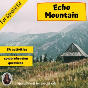 Echo Mountain Novel Study