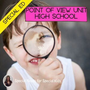 Point of View Unit for Special Education