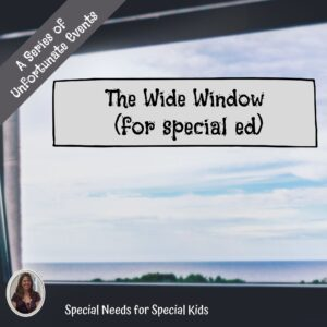The Wide Window Novel Study for Special Education with chapter questions