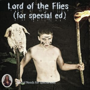 Types of Conflict Unit for Special Education