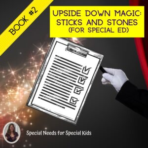 Sticks and Stones UDM 2 Novel Study for Special Education