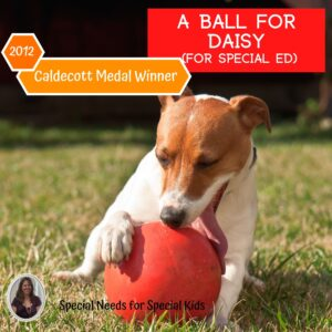 A Ball for Daisy Literacy Unit for Special Education